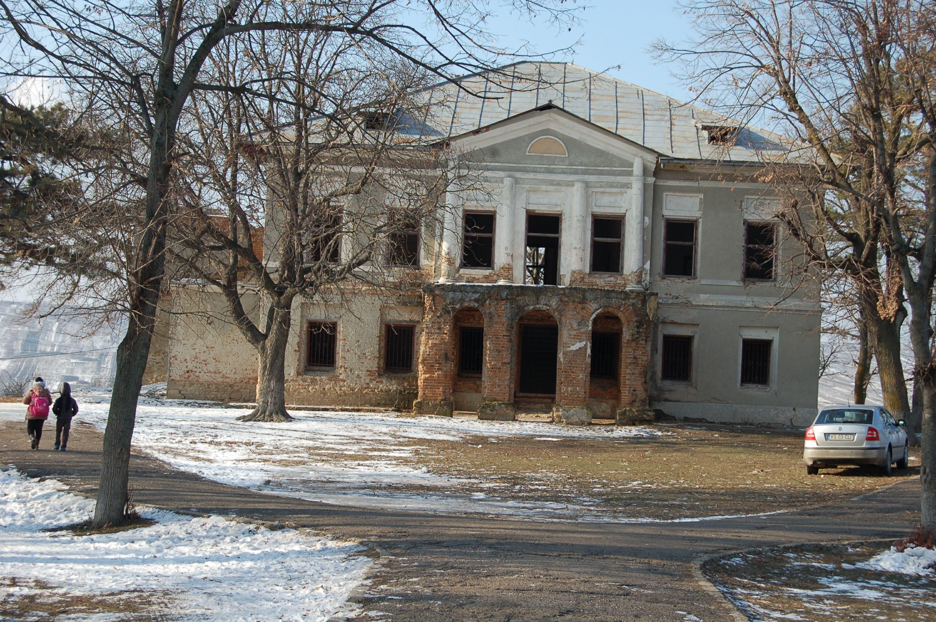 Vaslui: Palatul Elenei Cuza de la Solesti, retrocedat după 14 ani, poate fi restaurat cu banii UE 4
